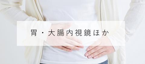 胃・大腸内視鏡の日帰り検査について